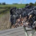 Chunky Yarn – Charcoal