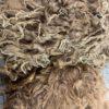 Raw Suri Fleece – Long Light Brown