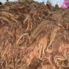 Raw Suri Fleece – Dark Blonde/Light Brown