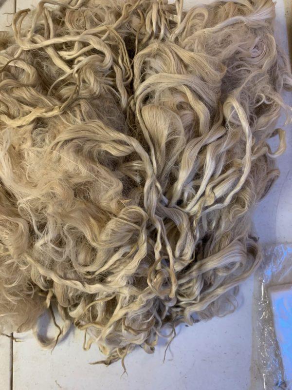 Raw Suri Fleece – White Fine 37 cm